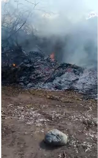 Moradores volta a reclama de queimadas em terrenos no bairro Abel Cavalcante em Sapé